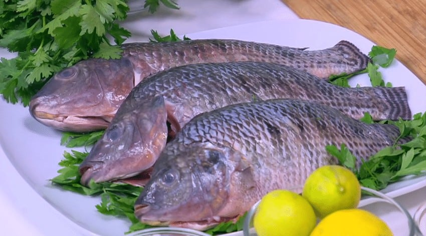 مقادير طريقة عمل سمك بلطي مقلي